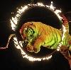 Цирки в Арамиле
